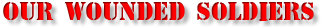 Family and Friends For Freedom Fund Wounded Soldiers